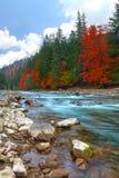 Fiume della montagna in autunno immagine stock
