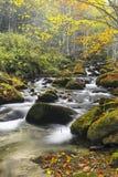 Fiume della montagna in autunno tardo Immagine Stock