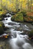 Fiume della montagna in autunno tardo Fotografia Stock