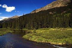 Fiume della montagna in Colorado Fotografia Stock