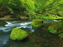 Fiume della montagna con a basso livello di acqua  Fotografia Stock