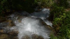 Fiume della montagna con le rapide archivi video