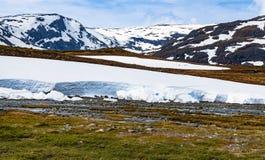 Fiume della montagna con neve di fusione Immagini Stock