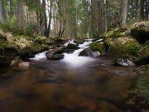 Fiume della montagna di Harz Fotografie Stock