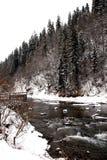 Fiume della montagna di inverno in Carpathians Fotografia Stock