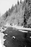 Fiume della montagna di inverno in Carpathians Immagine Stock Libera da Diritti