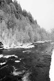 Fiume della montagna di inverno in Carpathians Fotografia Stock Libera da Diritti
