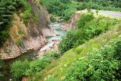 Fiume della montagna georgia immagini stock