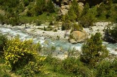 Fiume della montagna, gola di Galuyan, Kirghizistan Immagini Stock Libere da Diritti