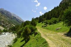 Fiume della montagna, gola di Galuyan, Kirghizistan Immagine Stock