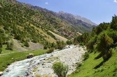 Fiume della montagna, gola di Galuyan, Kirghizistan Fotografie Stock