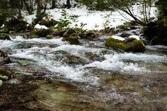 Fiume della montagna in inverno Fotografia Stock