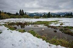 Fiume della montagna in inverno Fotografia Stock Libera da Diritti