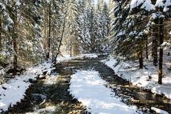 Fiume della montagna in inverno Immagini Stock