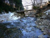 Fiume della montagna nei Carpathians Fotografia Stock Libera da Diritti