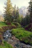 Fiume della montagna nel bello posto della foresta fotografia stock