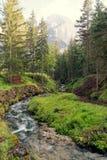 Fiume della montagna nel bello posto della foresta fotografie stock