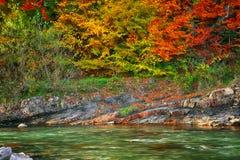 Fiume della montagna nel tempo di autunno immagini stock