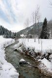 Fiume della montagna nell'orario invernale Immagine Stock