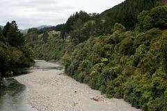 Fiume della Nuova Zelanda Immagini Stock