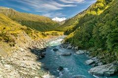 Fiume della Nuova Zelanda Fotografia Stock Libera da Diritti