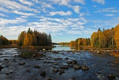 Fiume della Svezia in autunno Immagini Stock Libere da Diritti