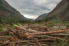 Fiume della valle di Chulyshman Fotografia Stock Libera da Diritti