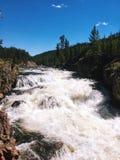 Fiume delle cascate nel parco nazionale di Yellowstone immagine stock