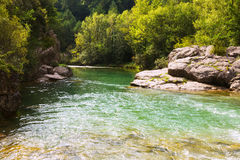Fiume delle montagne con la riva del fiume della foresta Immagine Stock Libera da Diritti