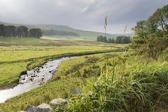 Fiume delle vallate di Yorkshire Immagine Stock