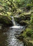 Fiume Derwent che attraversa la gola di Padley in Derbyshire Immagini Stock