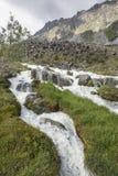 Fiume di Akkem Montagna di Altai La Russia Immagine Stock