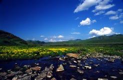 Fiume di Altiplano Fotografie Stock