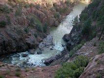 Fiume di Animas - Colorado Fotografia Stock