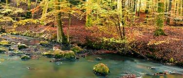 Fiume di autunno immagini stock