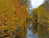 Fiume di autunno Fotografie Stock