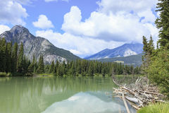 Fiume di Banff Immagine Stock
