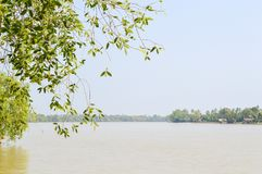 Fiume di Bangprakong in chachoengsao Tailandia Fotografia Stock Libera da Diritti