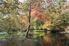 Fiume di Blackstone dell'azienda agricola della curvatura del fiume Fotografia Stock