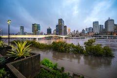Fiume di Brisbane durante la grande inondazione Fotografia Stock