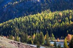 Fiume di Chuya un tributario giusto del fiume di Katun, Repubblica di Altai Fotografia Stock
