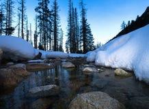 Fiume di congelamento nell'inverno Fotografia Stock Libera da Diritti