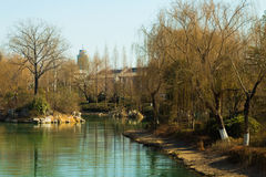 Fiume di Daming Lake Immagine Stock
