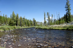 Fiume di Firehole - Yellowstone Immagine Stock Libera da Diritti