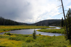 Fiume di Firehole - Yellowstone immagine stock