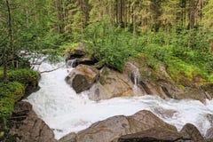 Fiume di Gerlos che attraversa la foresta del pino in alpi europee Fotografia Stock
