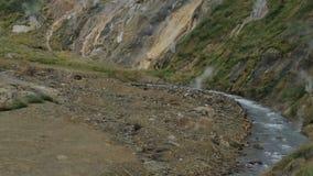 Fiume di Geysernaya in valle del video di riserva del metraggio dei geyser archivi video