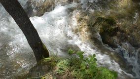 Fiume di Gostilje sulla montagna di Zlatibor con le cascate, le cascate, Overfalls e rapide archivi video