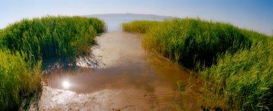 Fiume di inondazione della sorgente Fotografia Stock