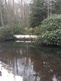 Fiume di inverni Fotografie Stock